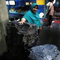batubara, museum geologi